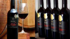 winery-cape-winelands02